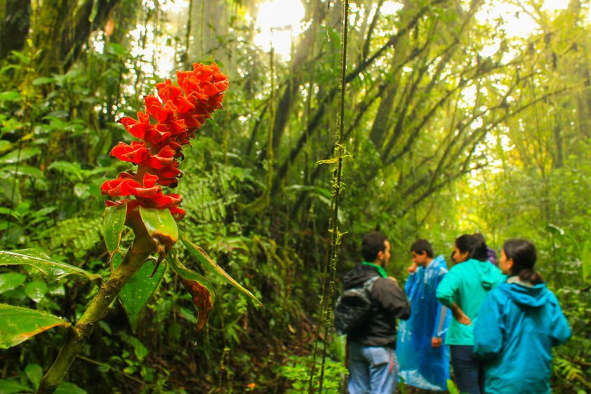 Monteverde is one of the best places to elope in Costa Rica